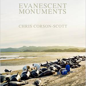 Evanescent Monuments by Chris Corson-Scott