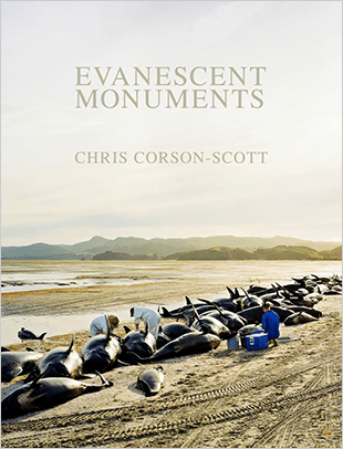 Evanescent Monuments by Chris Corson-Scott
